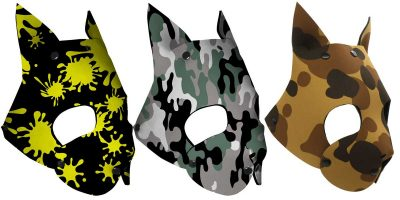 Kitten Hoods